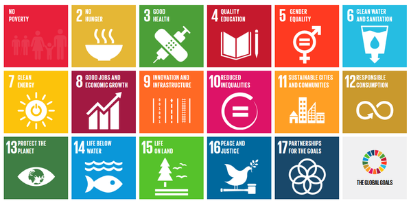 Reputation Dynamics supports the SDG's.