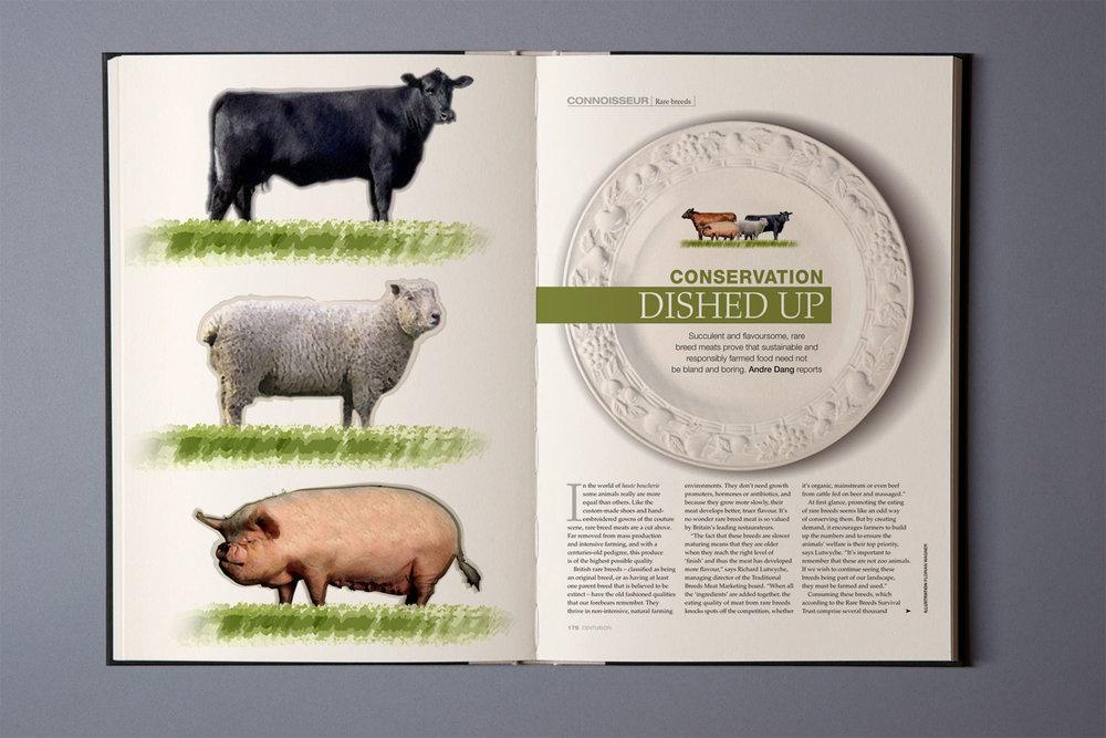 Editorial, Centurion Magazin, American Express