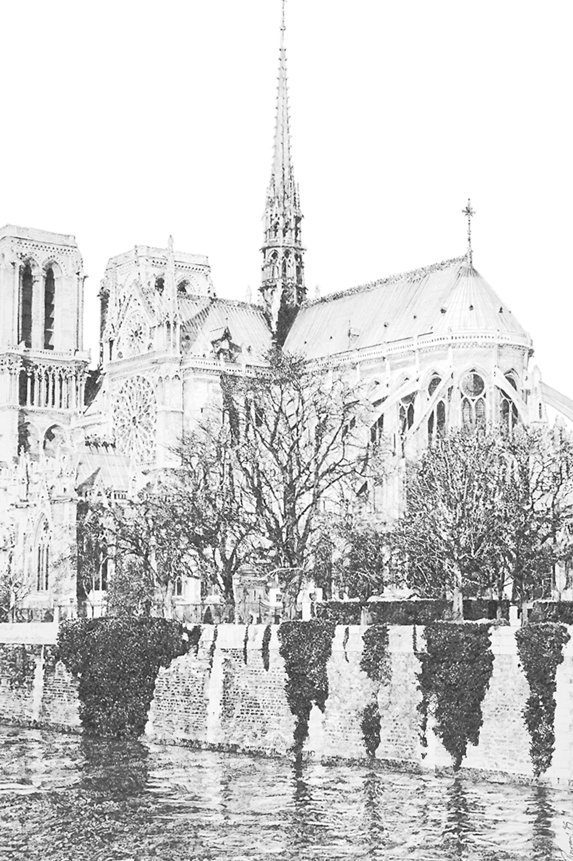 "Notre Dame, graphite on Arches paper, 30"" x 24"""