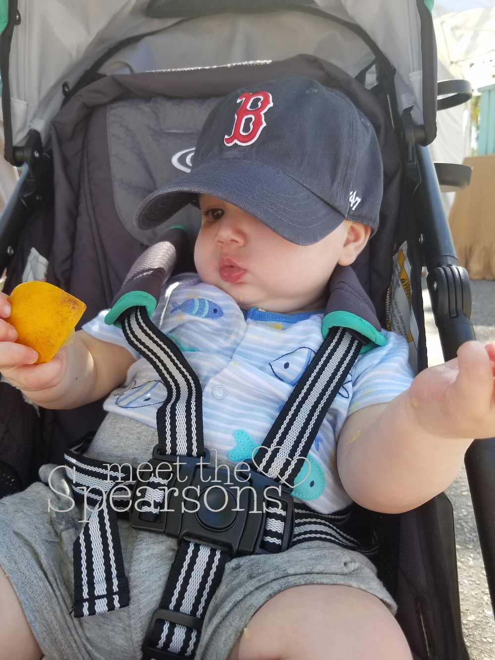 Bonita Springs Coconut Point Farmer's Market Baby Friendly