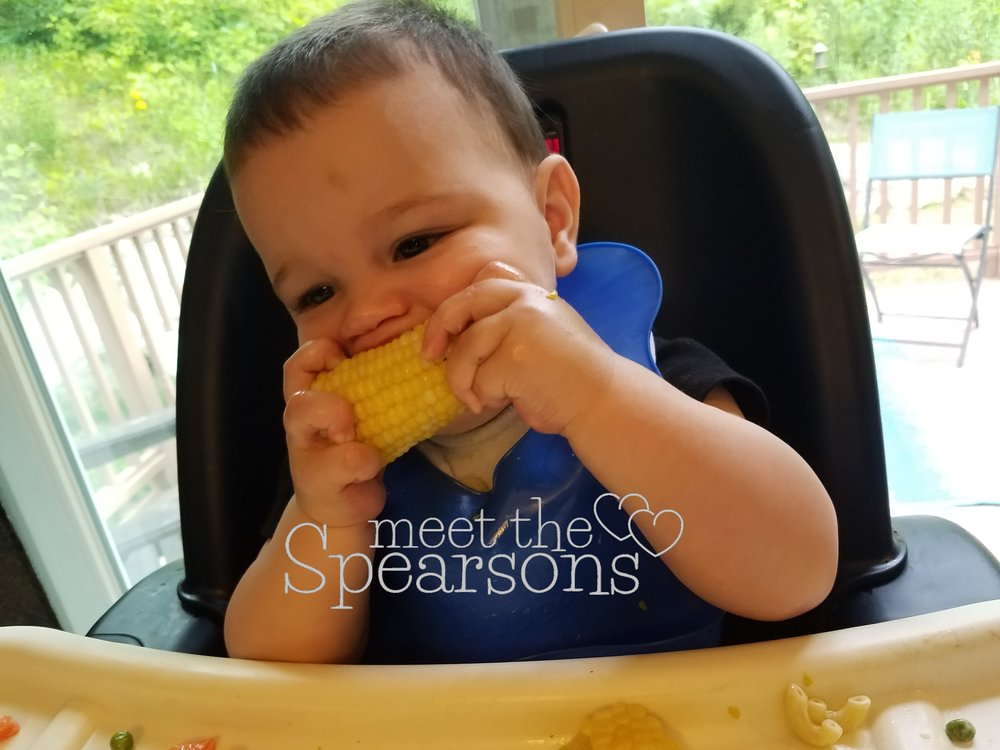 Baby no teeth corn on the cob