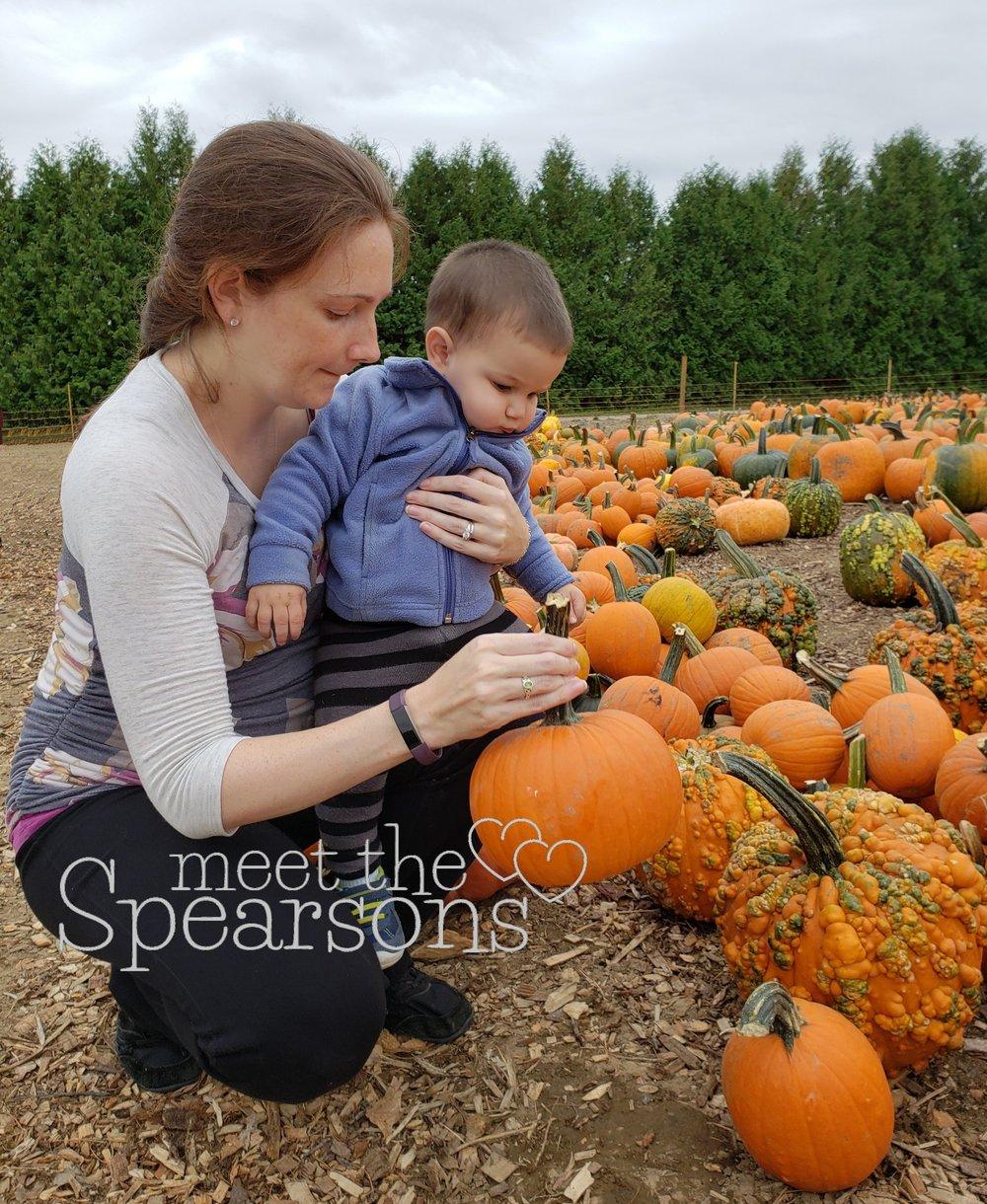 Parlee Farms Pumpkins