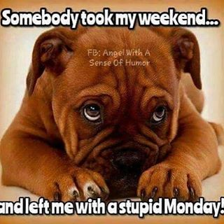 """Definitely having a case of the """"Monday's"""" after last weekend, but at least we're one day closer to Friday! Hope everyone has a great week! #mondaymotivation #weekendwarrior #dallasisdallas #uptowndallas #avenulounge"""