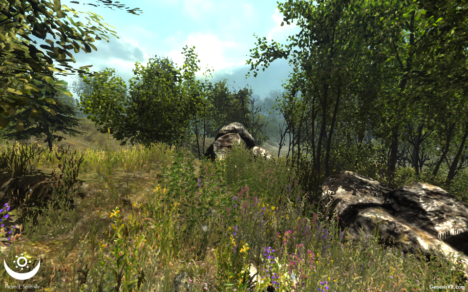 GenesisVR_ProjectSerenity_forest1.jpg