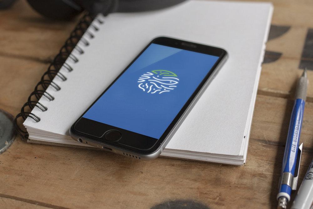 Faico5.jpg