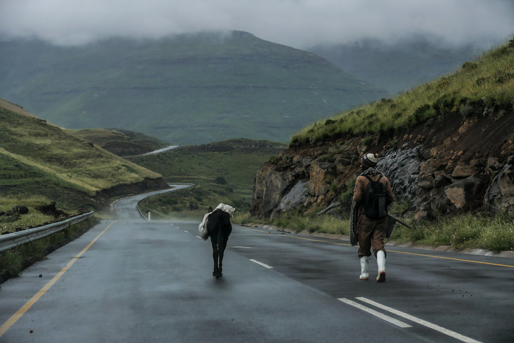 Basotho man and his donkey on the long mountain road between villages. Recently paved by China :)