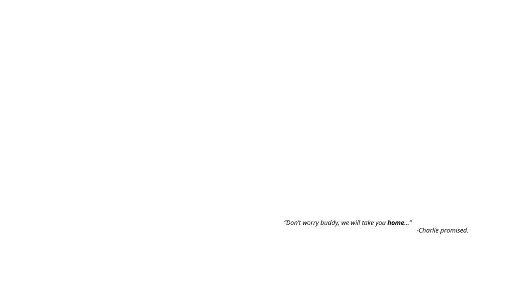 JohelRivera_LHNF__Page_31.jpg