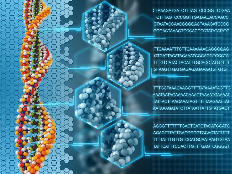bioinformatics.jpg