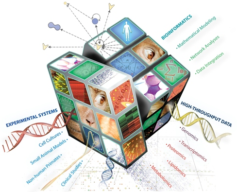 The puzzle of multi-omics analysis is not one we shy from.  Suffice to say, the challenges are data set specific.  However, we're experienced and knowledgable about the most descriptive integration statistics and systems biology approaches to make even more features stand out when looking at multi-level omics data.