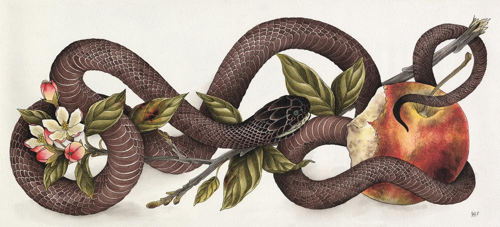 Snake & Apple