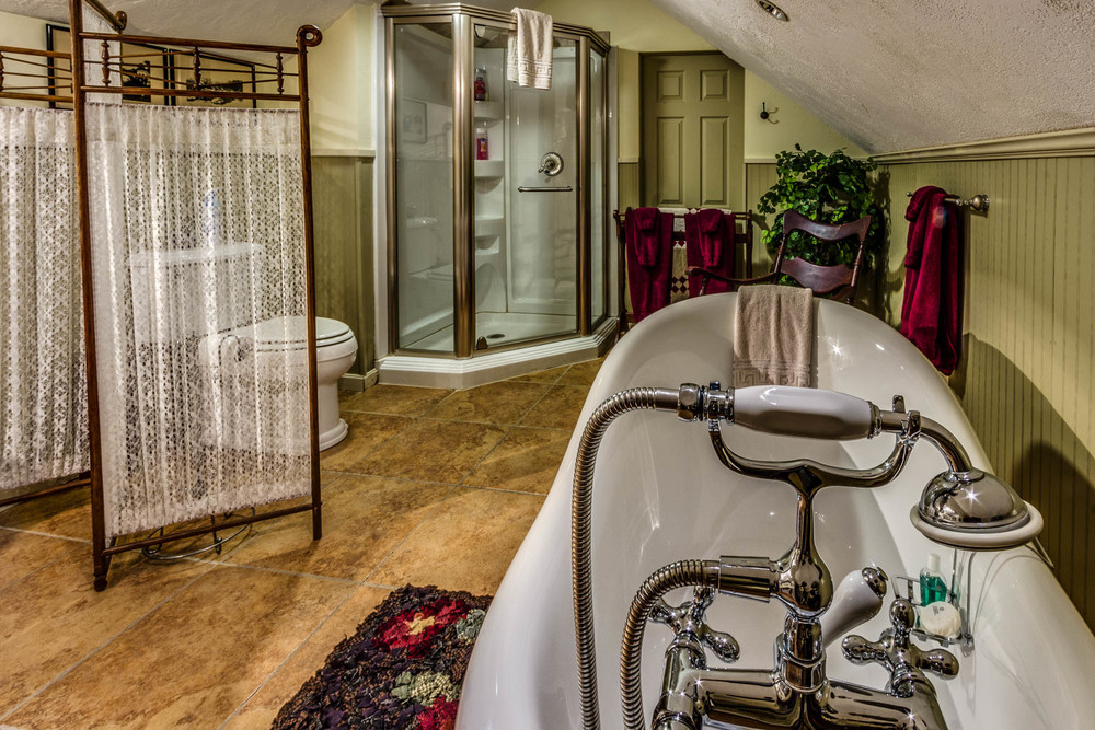 A very cool shower and a claw foot tub