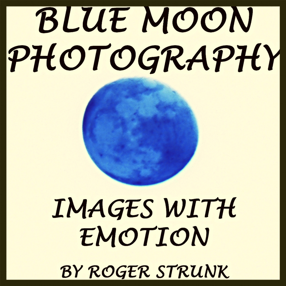BLUE MOON PHOTOGRAPHY