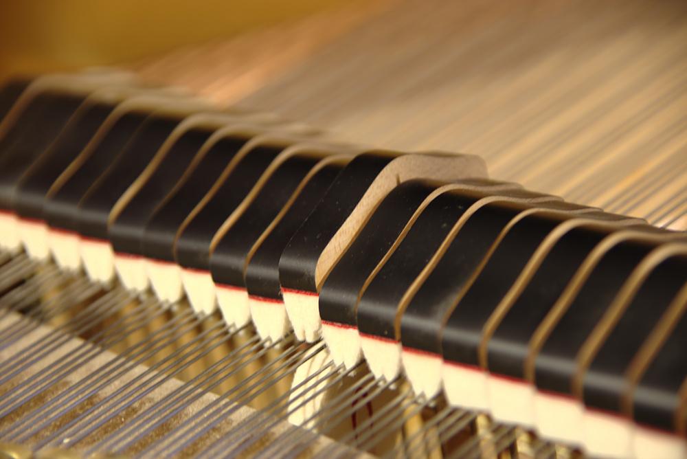 Objectifs comme les examens RCM et CMC, Chapman Piano Studio, NDG, Montreal. Photo Credit. Yuuki Omori 2014.