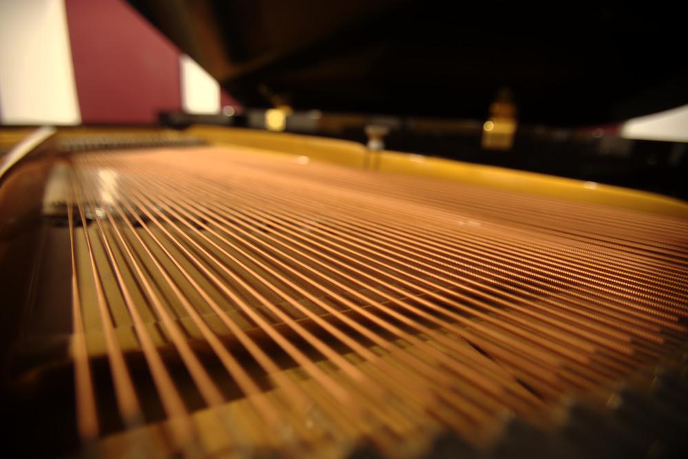 Purchasing a piano, Chapman Piano Studio, NDG, Montreal. Photo Credit. Yuuki Omori 2014.