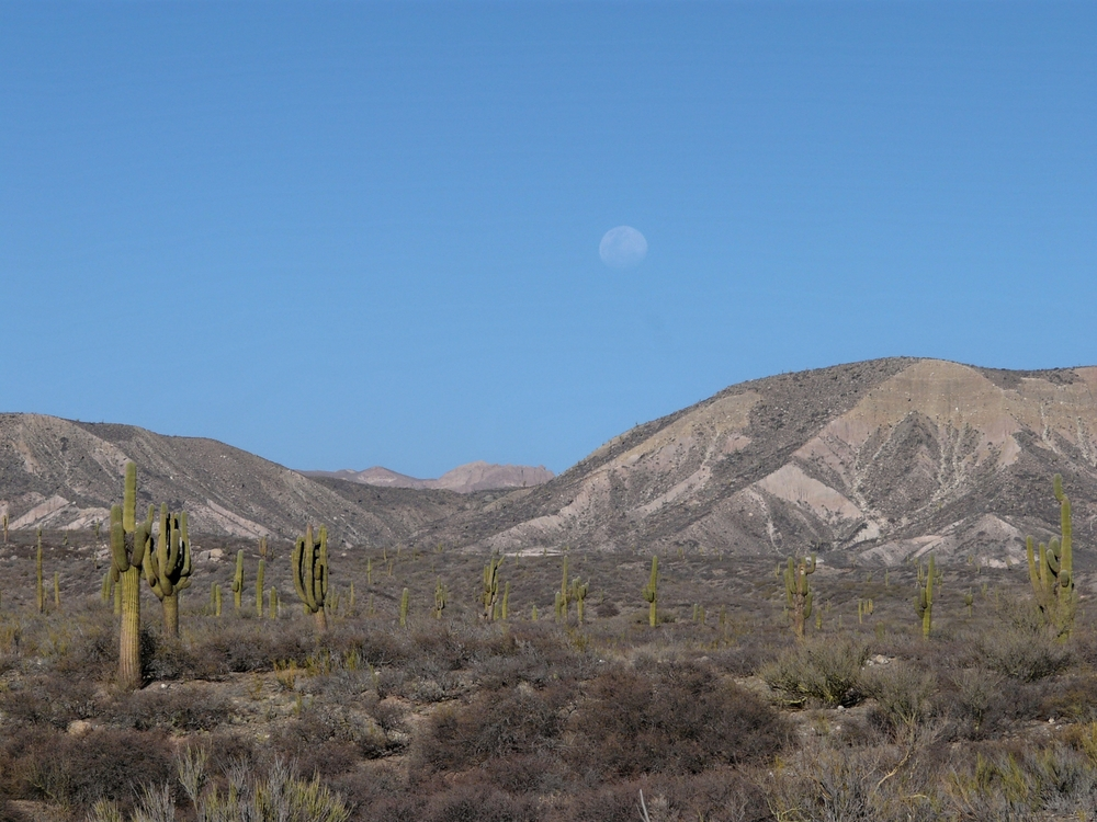 Moonrise over the high desert near Cachi, Argentina (2500 m elevation).