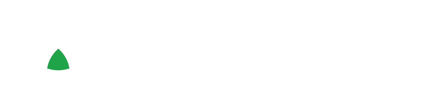 Pareto Policy Solutions, LLC