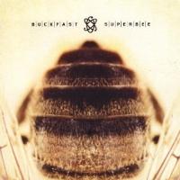 """Buckfast Superbee """"Buckfast Superbee"""" (Producer/Engineer/Mixing)"""