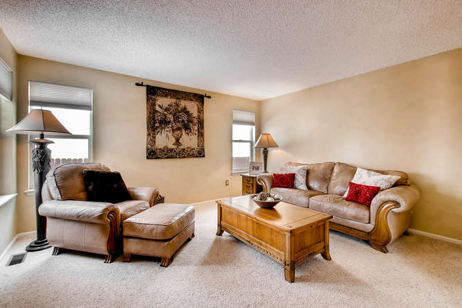 4201 Cottonwood Lakes Blvd-small-015-25-Family Room-666x444-72dpi.jpg