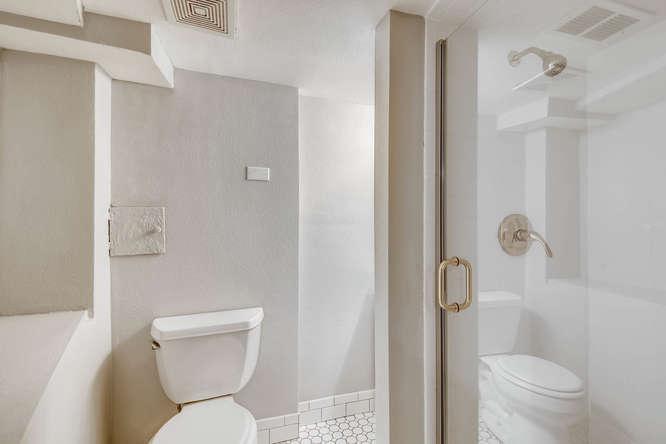 3576 Bruce Randolph Ave Denver-small-021-15-Lower Level Bathroom-666x444-72dpi.jpg