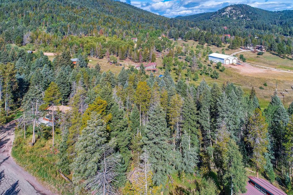 19333 Silver Ranch Rd Conifer-large-002-9-Views-1500x1000-72dpi.jpg