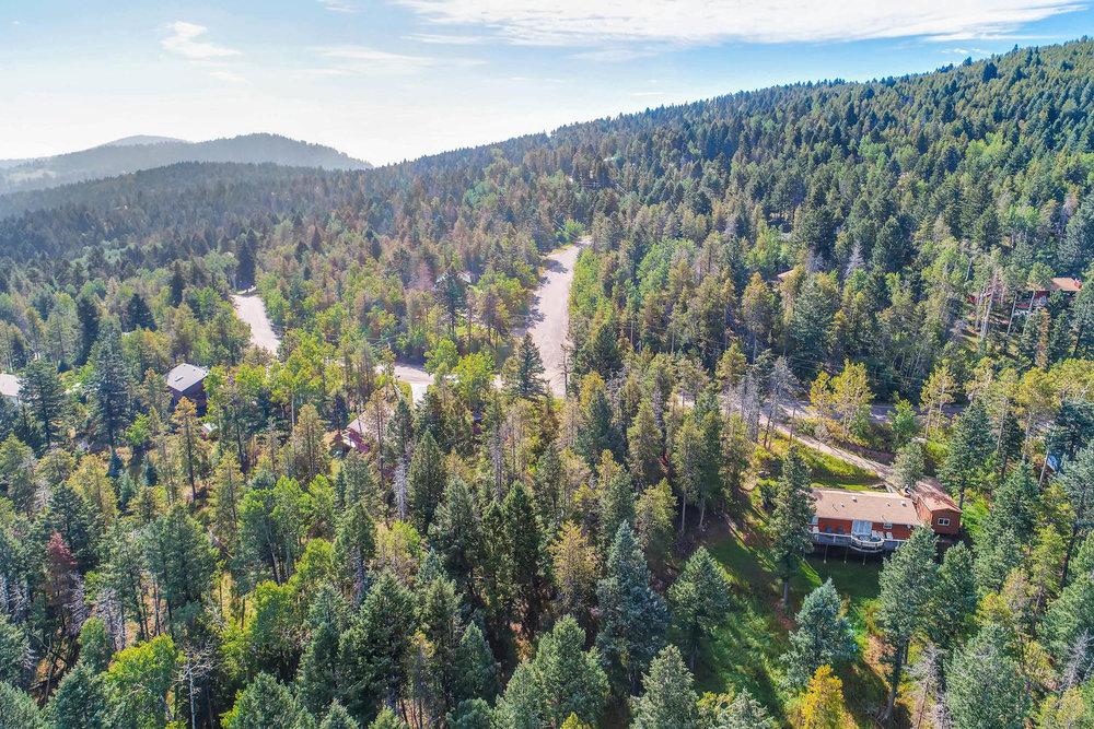 19333 Silver Ranch Rd Conifer-large-006-2-Views-1500x1000-72dpi.jpg