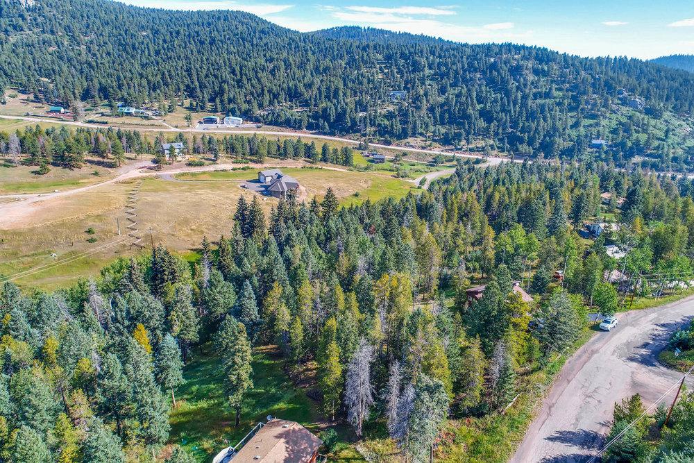 19333 Silver Ranch Rd Conifer-large-009-5-Views-1500x1000-72dpi.jpg