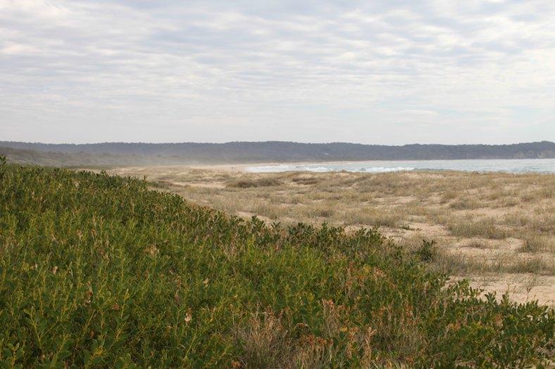 Tathra beach
