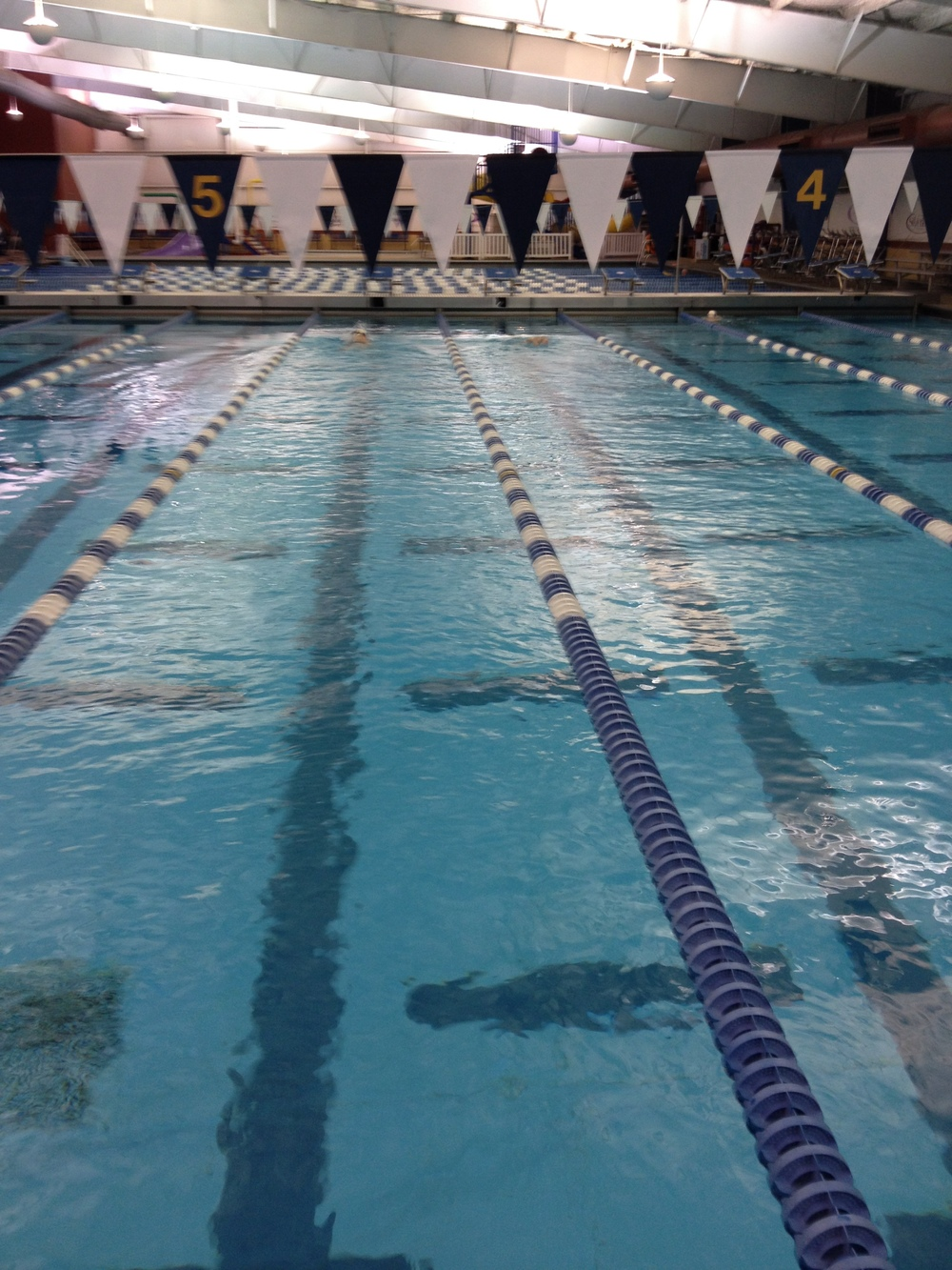 Where did the swimmers go????   Oh yeah, TENNESSEE TUMBLERS!