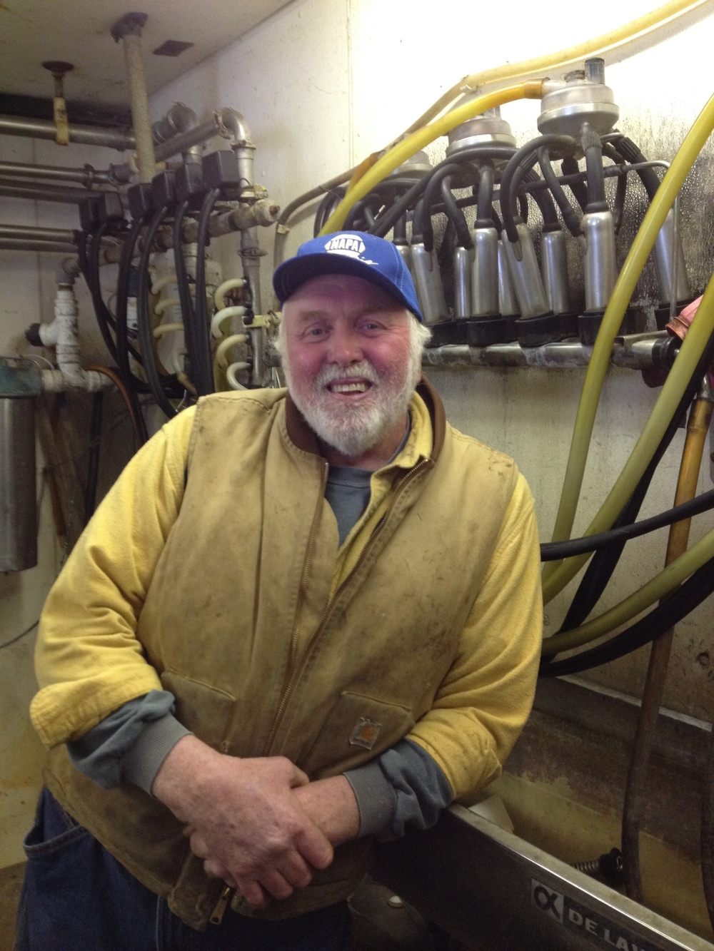 Bob Andrews - dairy farmer