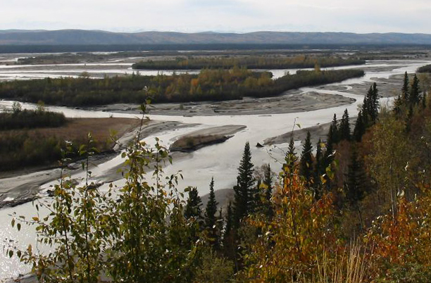 The Tanana River is a wide, glacially fed river with many channels and sloughs.  (Original image by Liz via Flickr)