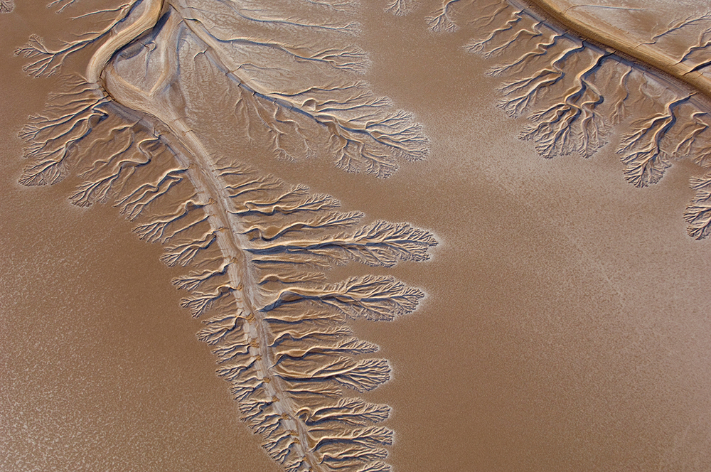 The leading edge of the Colorado River in 2009, five miles short of the ocean.  (Image by Pete McBride via  U.S. Geological Survey )