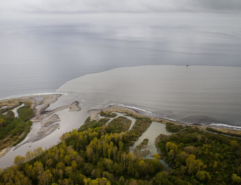 This photo was taken in 2012, during the dam removal project on the Elwha River. Sediment released by the demolition was deposited in and around the estuaries at the river mouth; some sediment also flowed into the Strait of Juan de Fuca as a coastal plume. (Image by John Felis via USGS/Public domain)