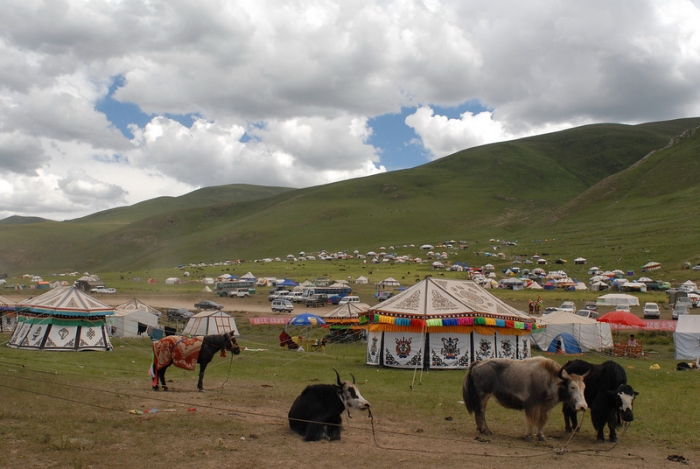 The Yushu Horse Festival on the Tibetan Plateau