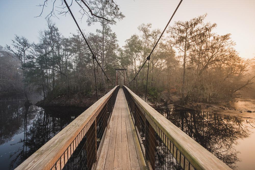 b7692-bridgebridge.jpg