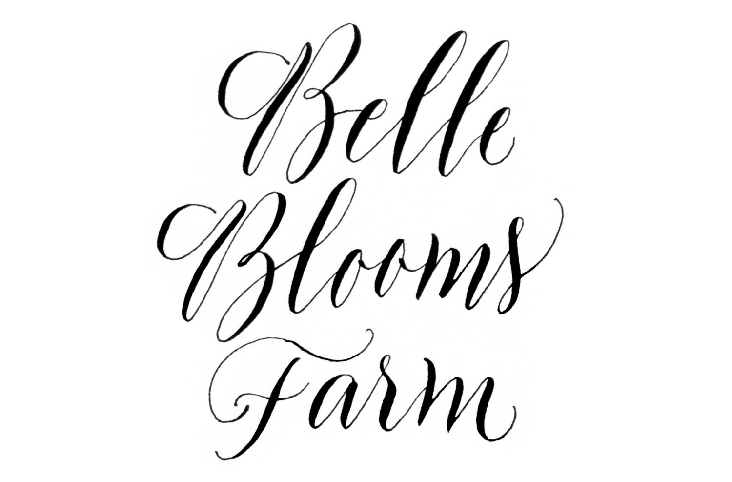 BELLE BLOOMS FARM