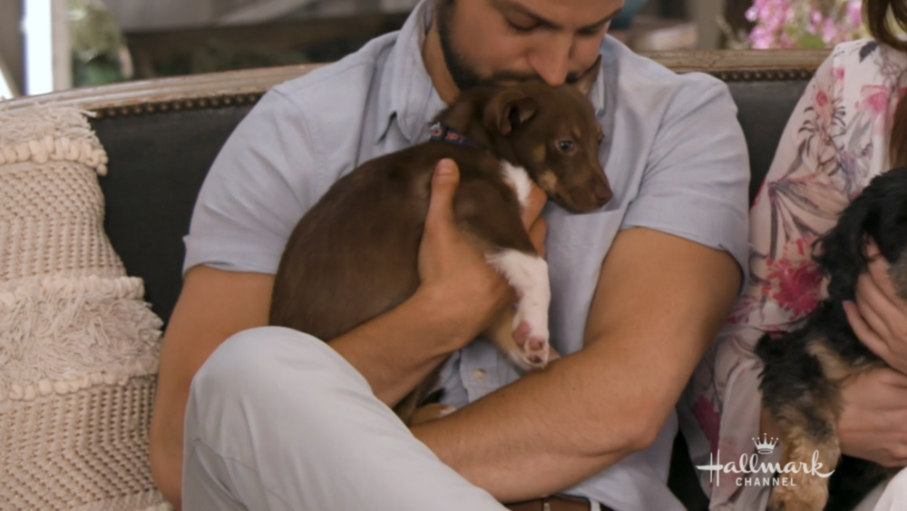 Is it weird to be jealous of a dog?