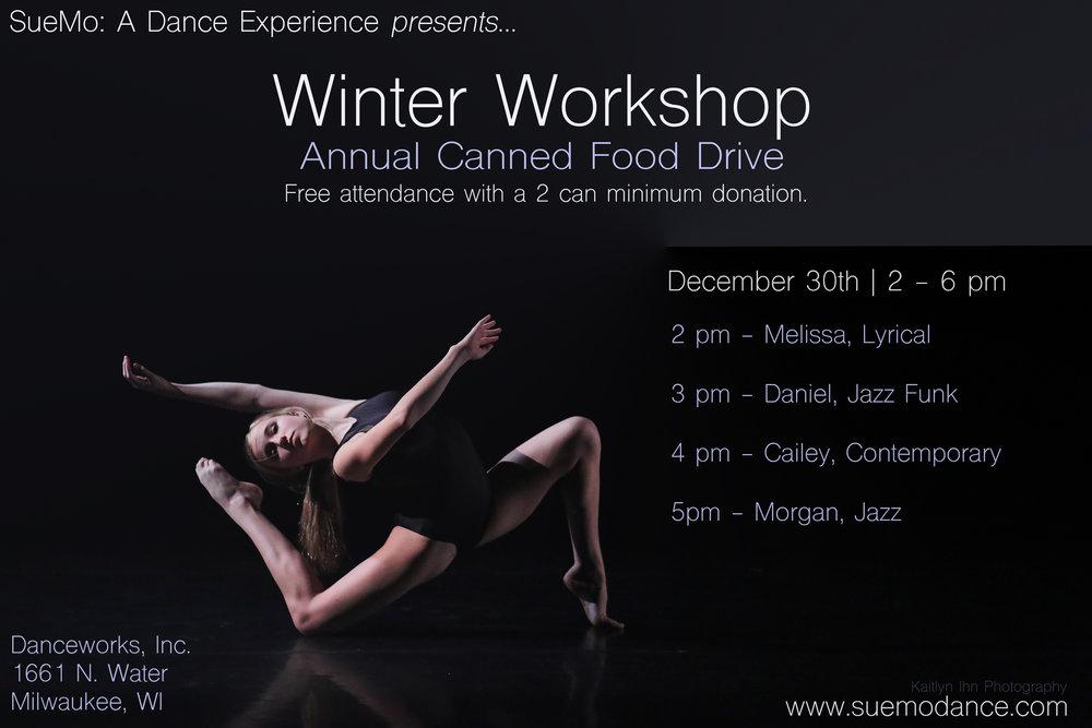 SueMo Winter Workshop 2017.jpg