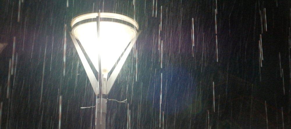 Palenque rain.jpg