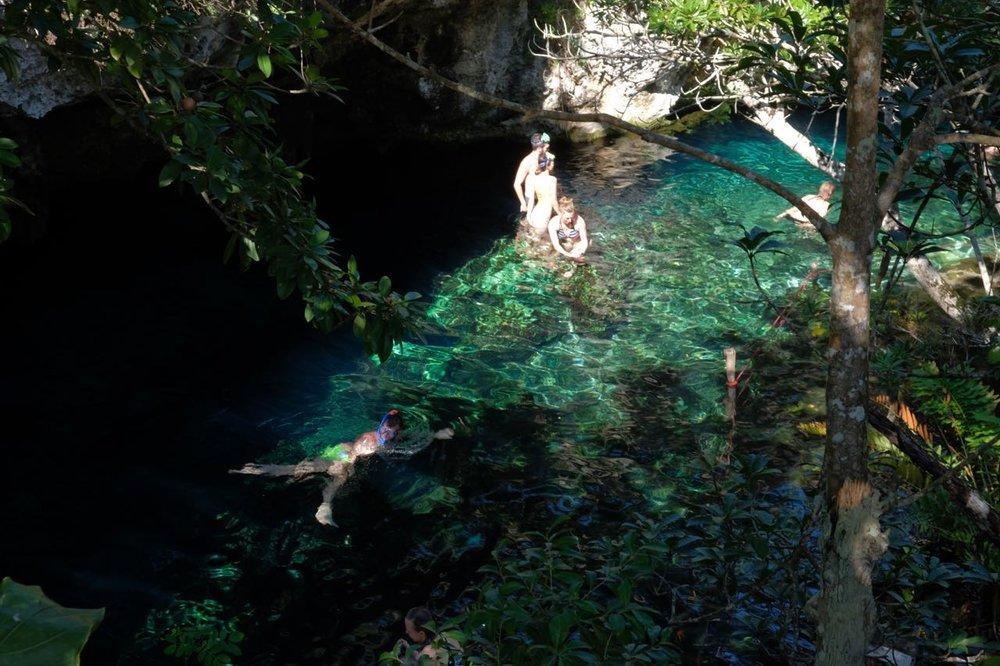 cenote f2.jpg