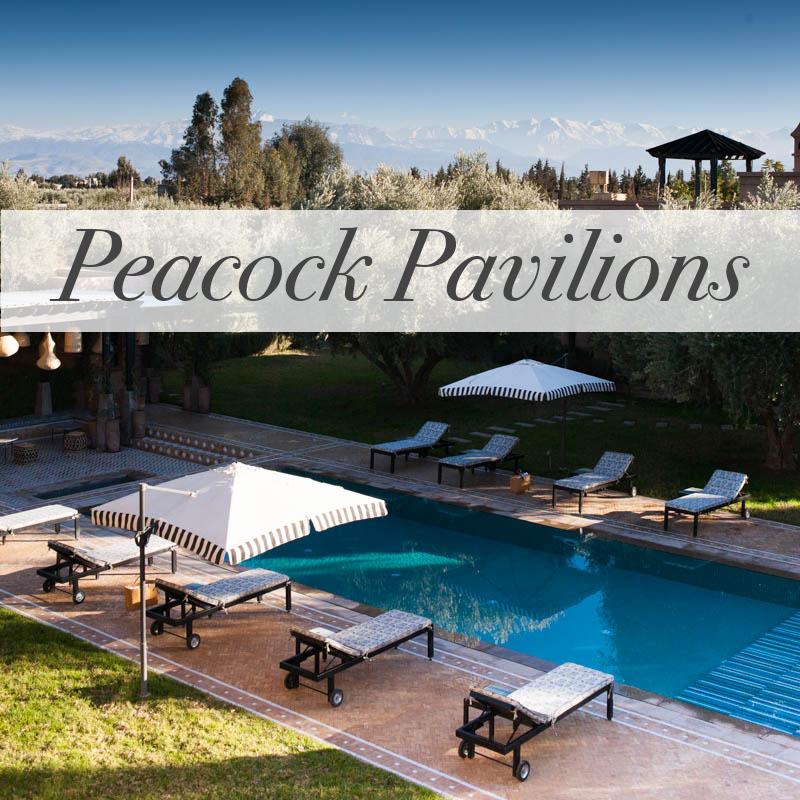 Peacock Pavilions M.Montague #tribalchic