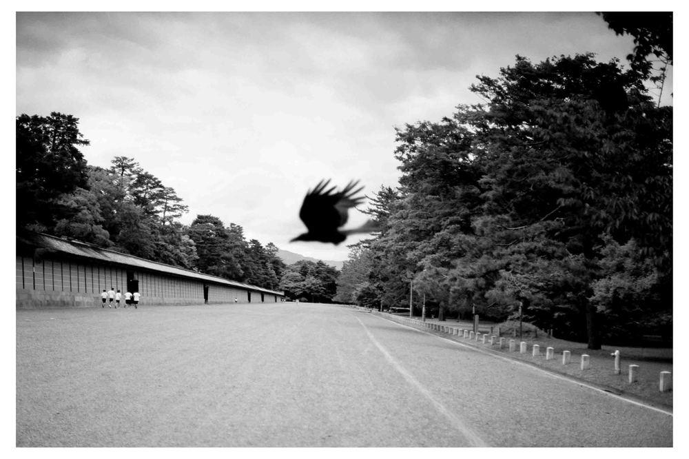 Kyoto 1. 2005