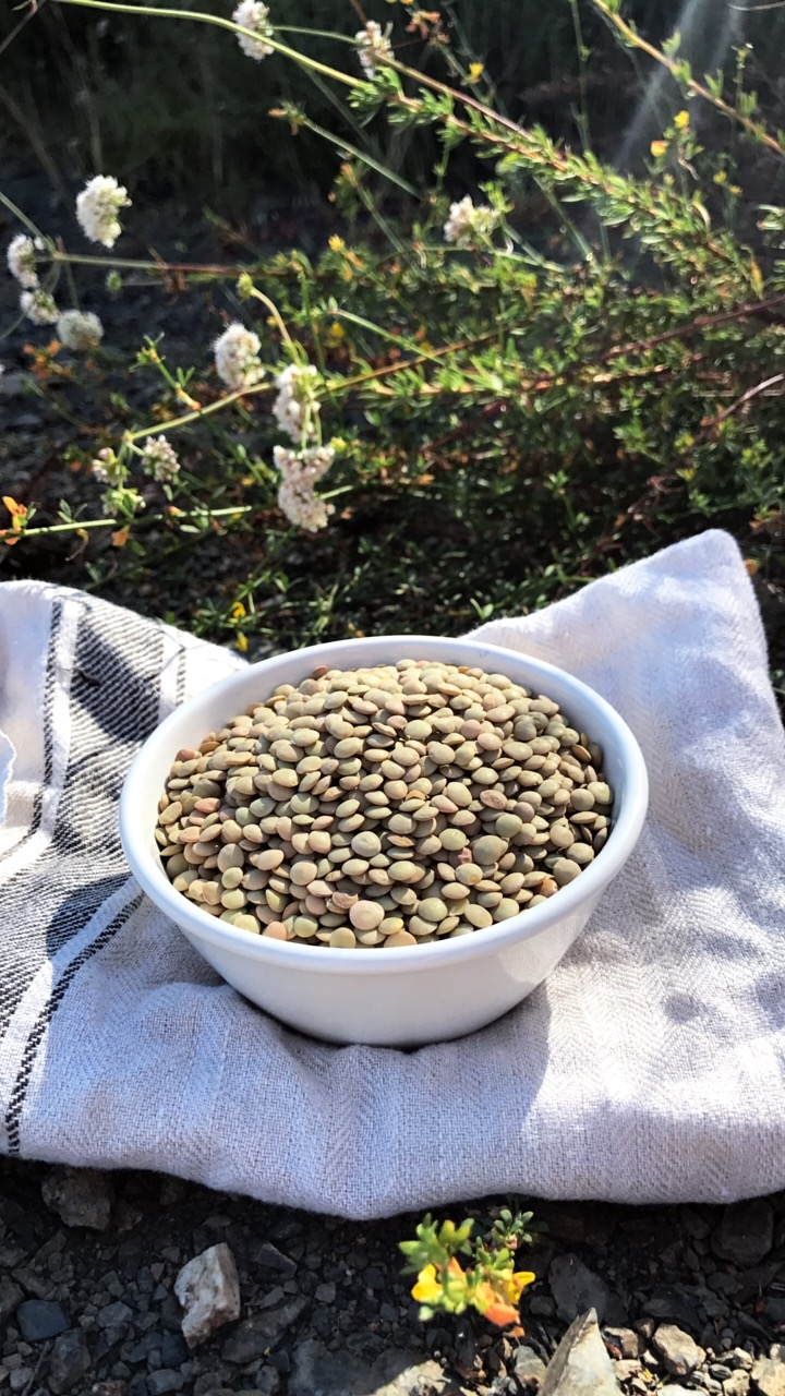 Lentils, these tiny little legumes are full of Protein, Iron, Zinc and Biotin, essential ingredients for promoting hair growth.  -