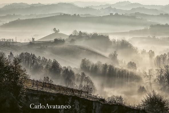 le colline del Roero.jpg