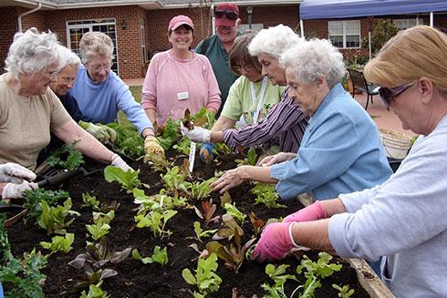 seniors in garden.jpg