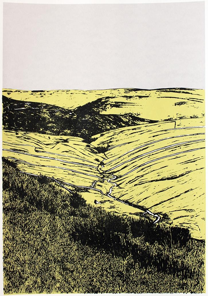 On Buttertubs Pass (2014)