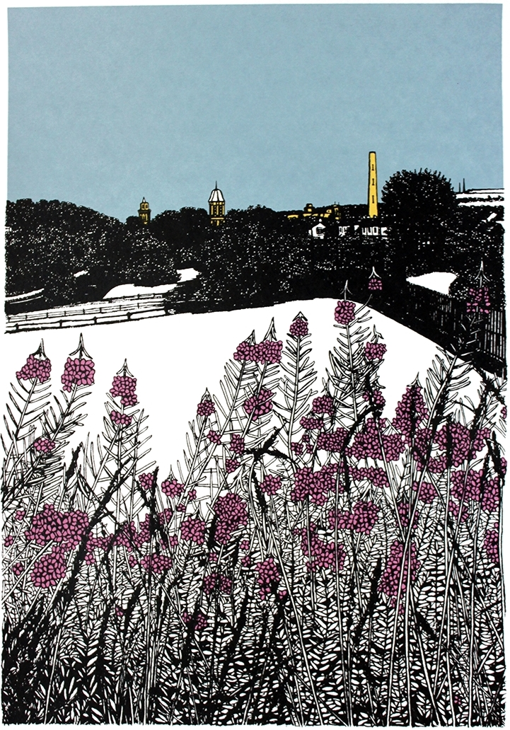 Saltaire Beyond the Rose Bay Willow Herb