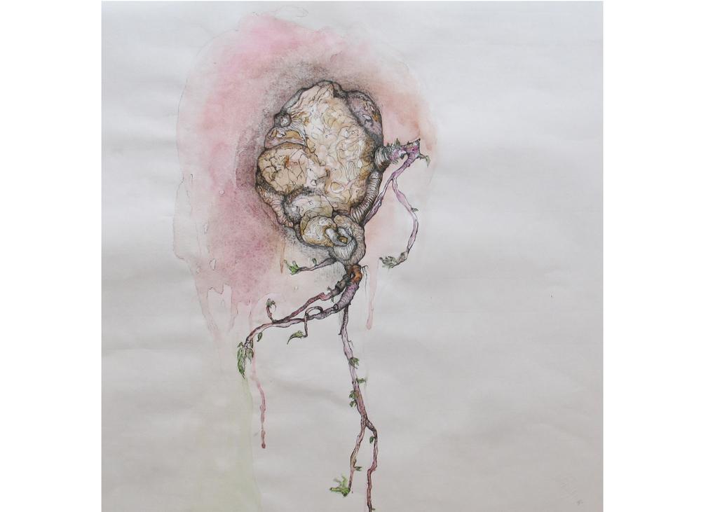 Tubercule, technique mixte sur papier Ingres, 50 x 50 cm