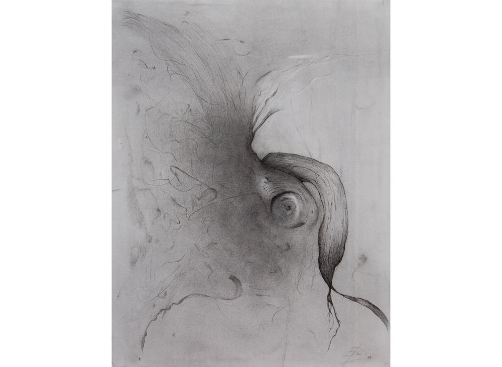 Semence, craie noire, fusain et feutre sur papier Fabriano, 60 x 70 cm