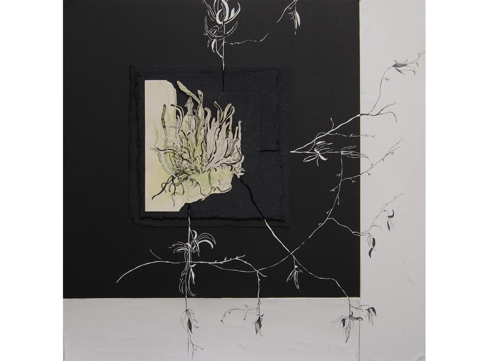 Plante araignée, dessin à l'encre, aquarelle et gravure sur carton, 1mx1m