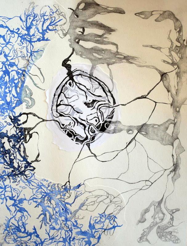 Rhizome I , 50x60cm